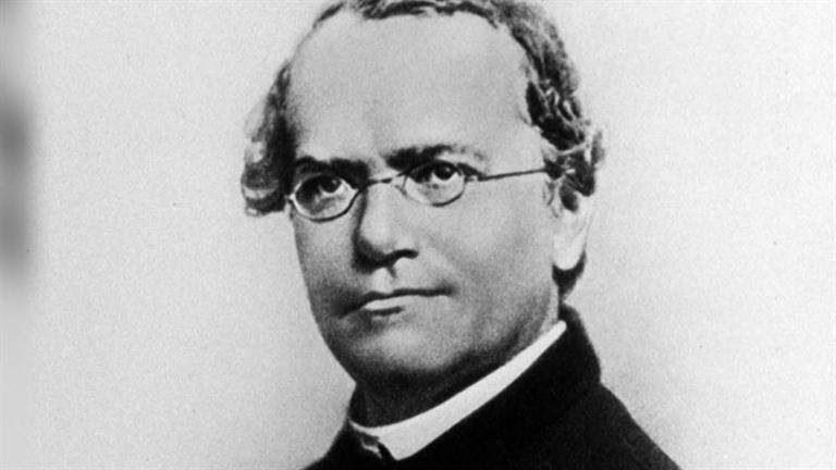 a biography of gregor johann mendel the founder of the modern science of genetics Considered one of the greatest scientists in history, gregor mendel was the first person to map the characteristics of a living things successive generations, thus.